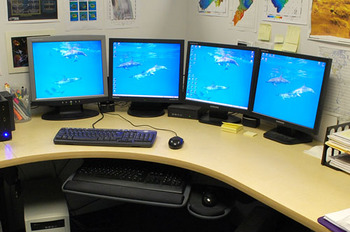 Old_LCD_monitors.jpg