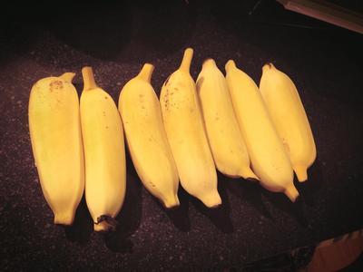 banana_110313-02.jpg