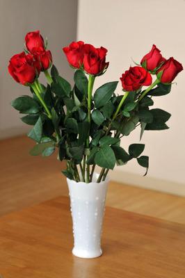 valentine_021413-01.jpg