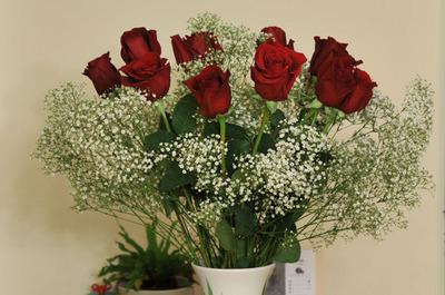 valentine_rose_021412-02.jpg